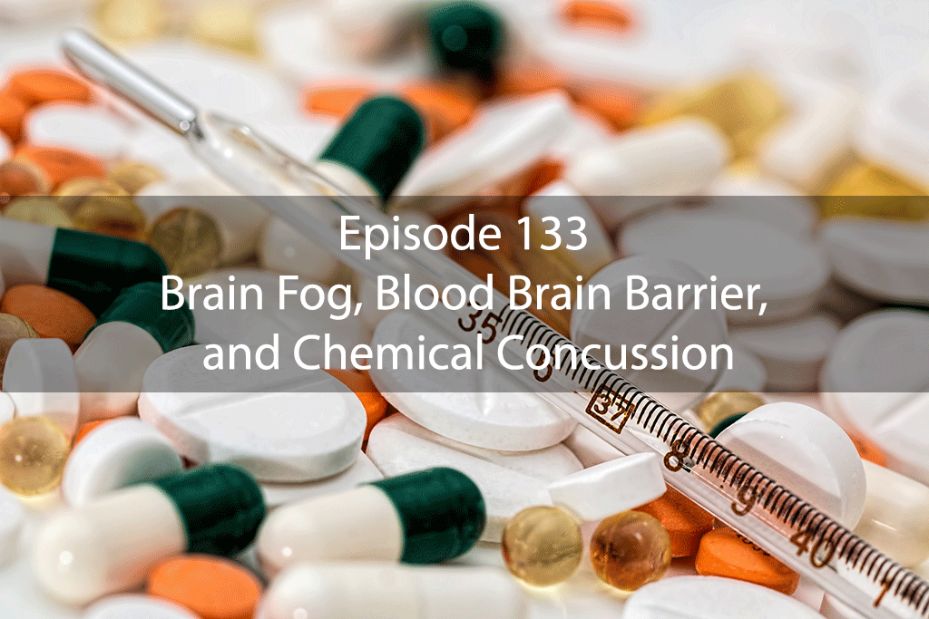 Ask Dr Kan Show Ep 133 – Brain Fog, Blood Brain Barrier, and Chemical Concussion