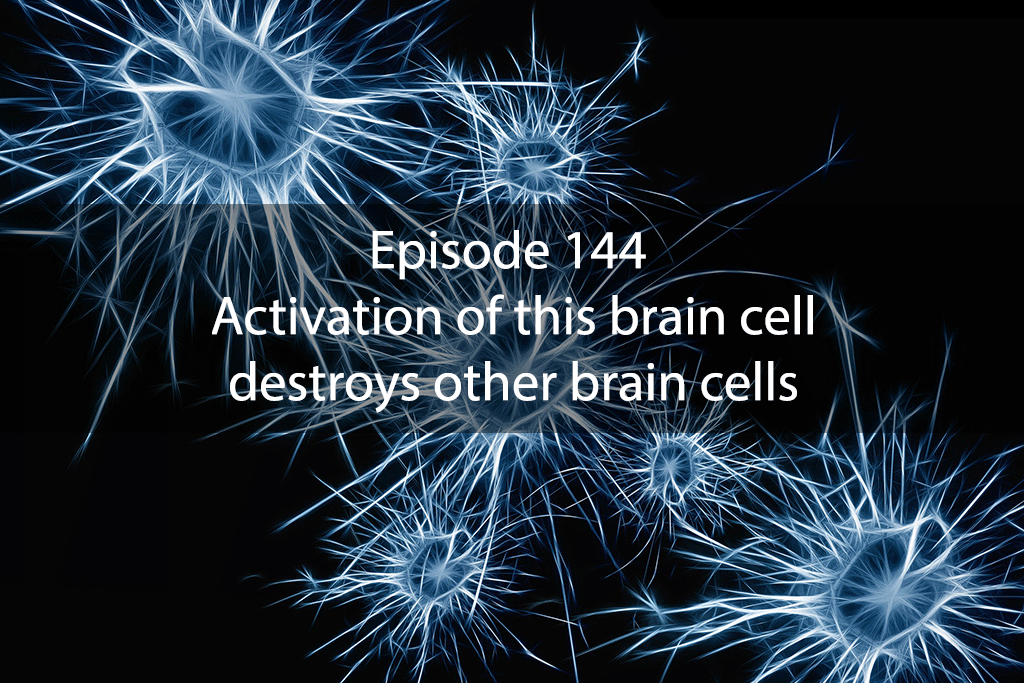 Ask Dr Kan Show Ep 144 – Activation of this brain cell destroys other brain cells