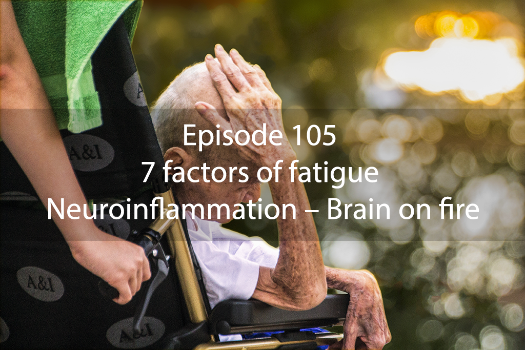 Ask Dr Kan Episode 105 – 7 factors of fatigue part 5 – Neuroinflammation – Brain on fire