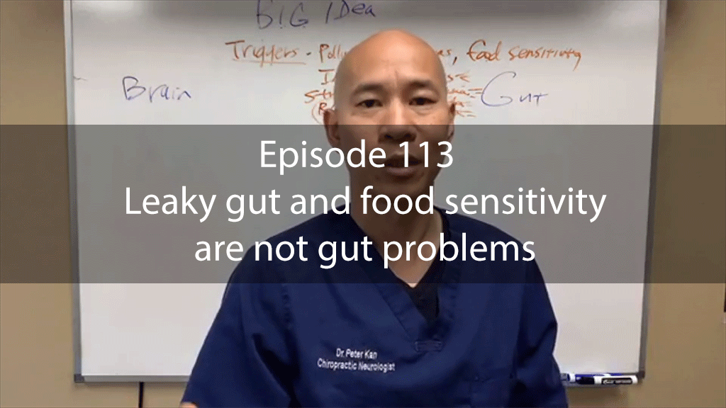 Ask Dr Kan Show Episode 113 – Leaky gut and food sensitivity are not gut problems
