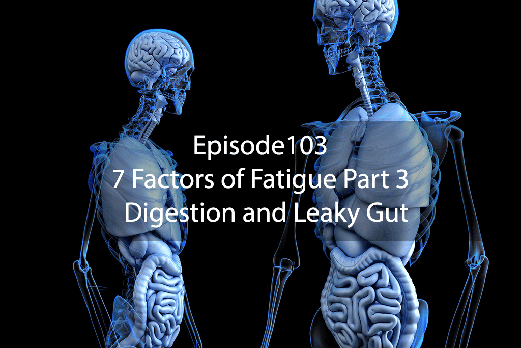 AskDrKanEpisode103 – 7 Factors of Fatigue Part 3 – Digestion and Leaky Gut