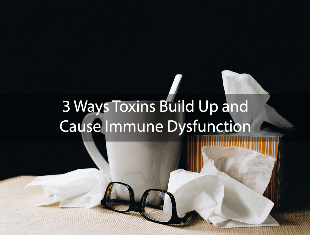 3 Ways Toxins Build Up and Cause Immune Dysfunction
