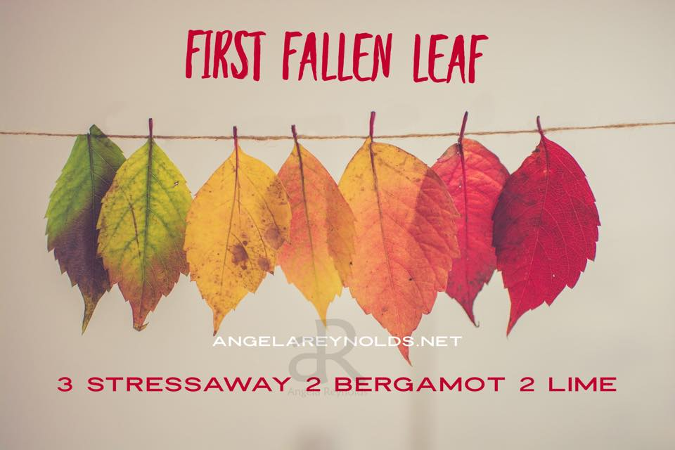 First Fallen Leaf Diffuser Recipe