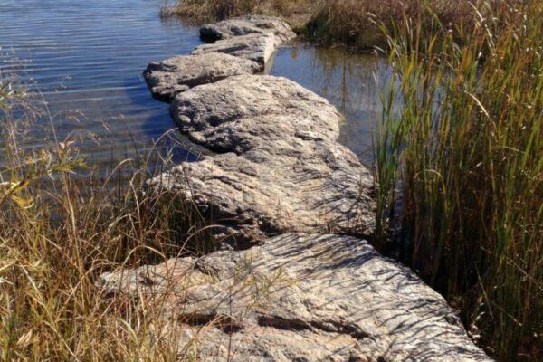 Fossil Creek Park - Stepping Stone Bridge