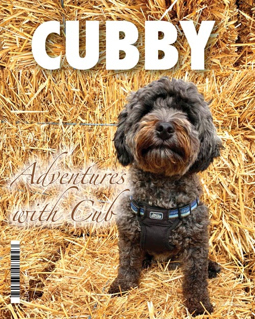 Cubby's mini magazine