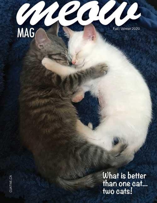 Gord & Rafiki's Magazine