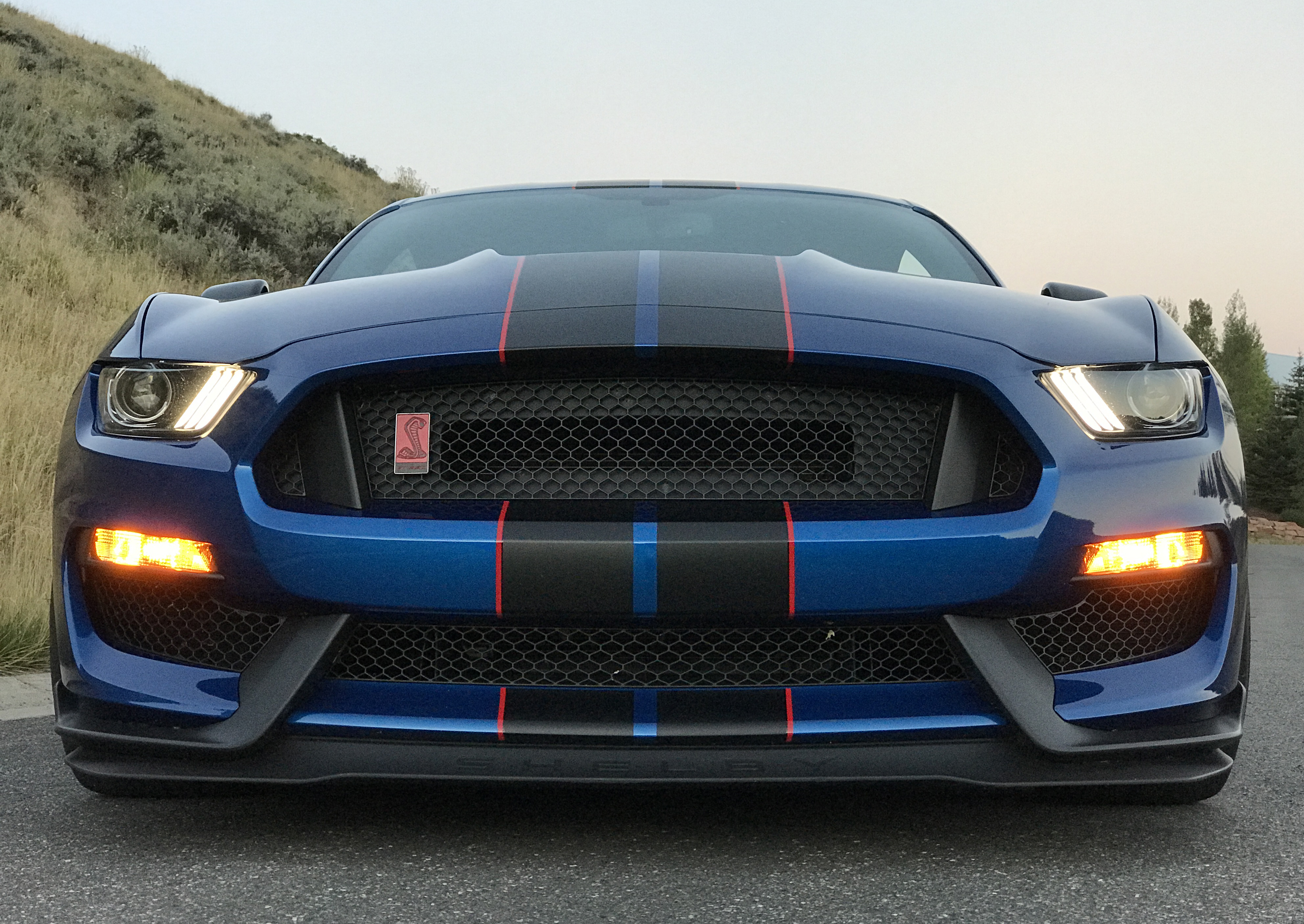 2017 Ford Mustang Shelby GT350R Grille
