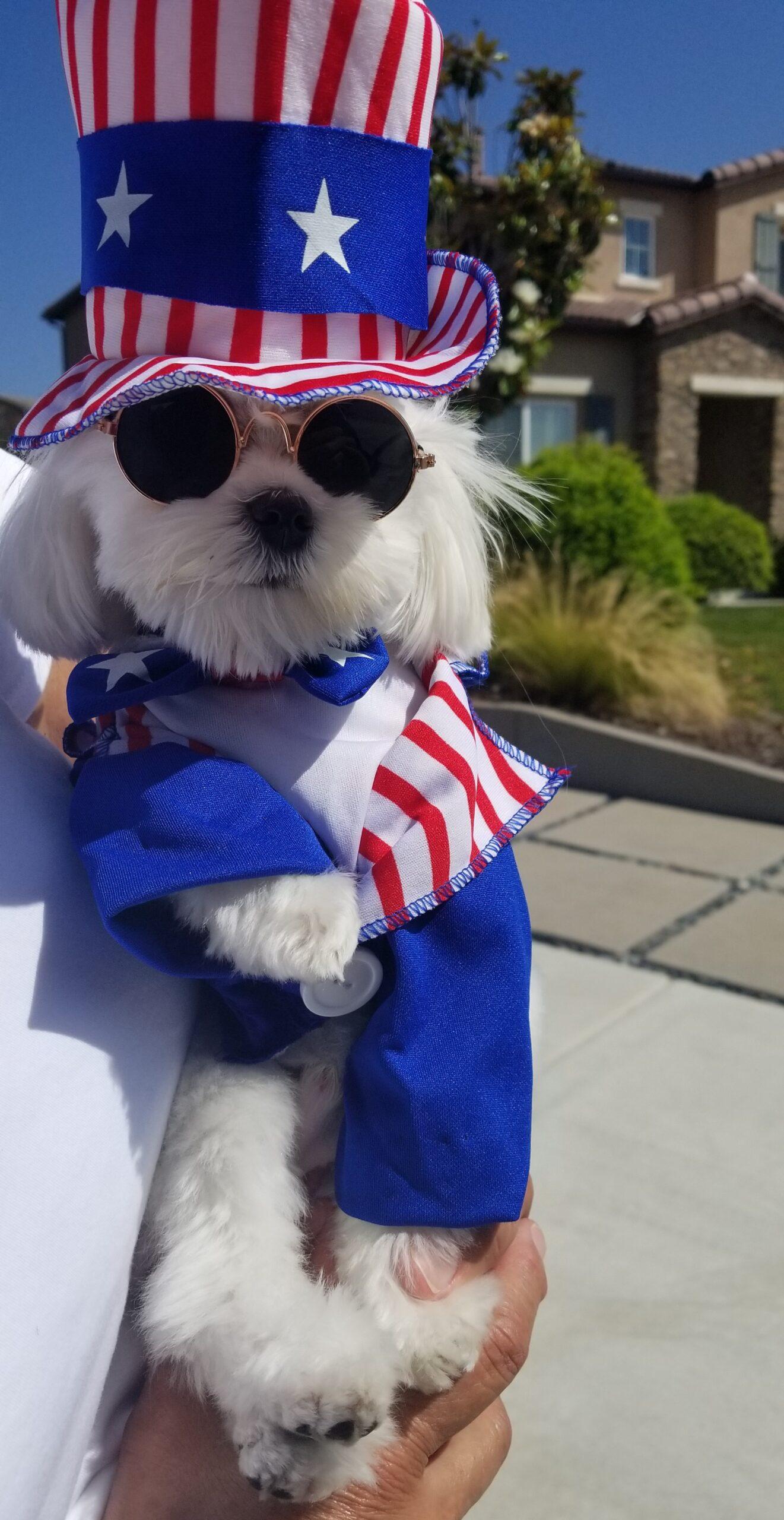 """Ripple"" celebrating the USA!"
