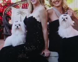 Fox & Oscar Promo Shot
