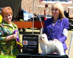 Oscar as Puppy goes Best of Breed over Special