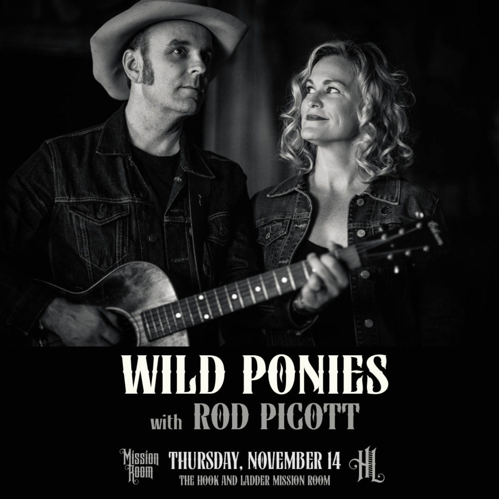 Wild Ponies with Rod Picott on Thursday, November 14 at The Hook!