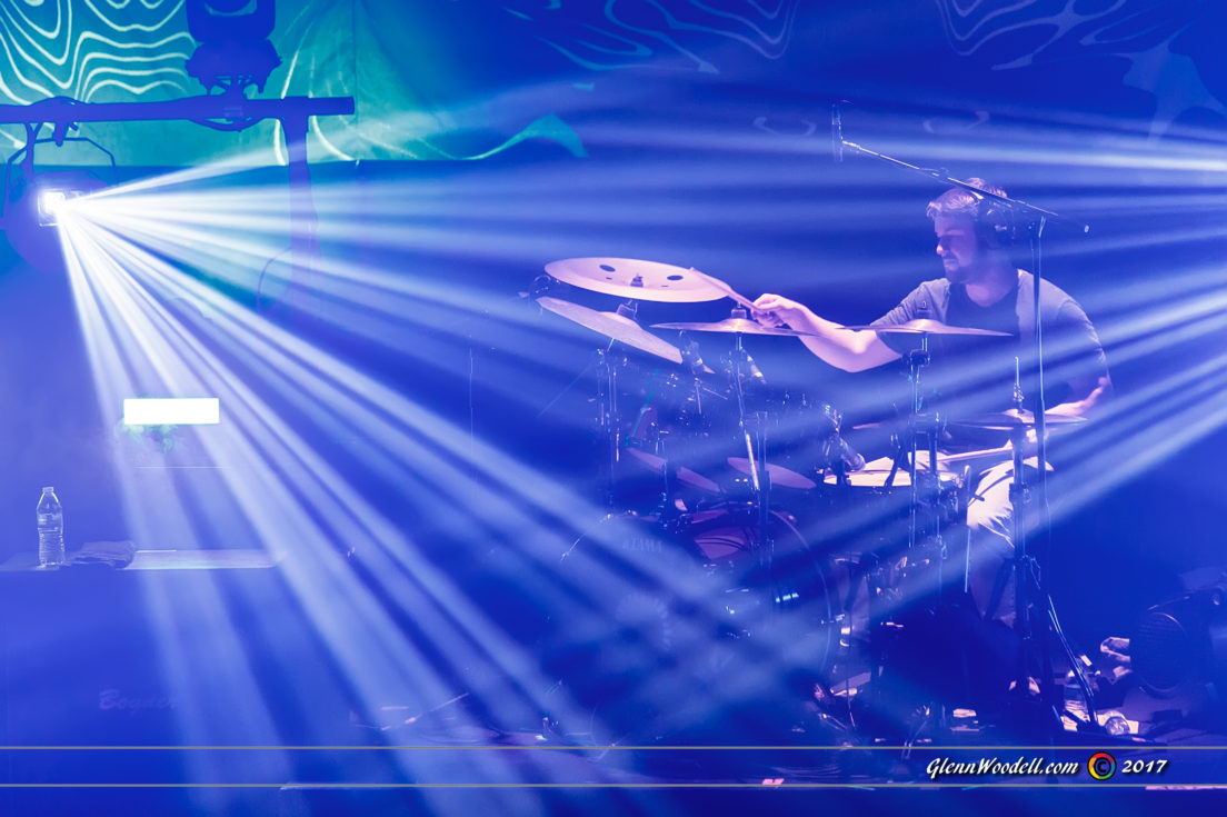 animals as leaders_4662
