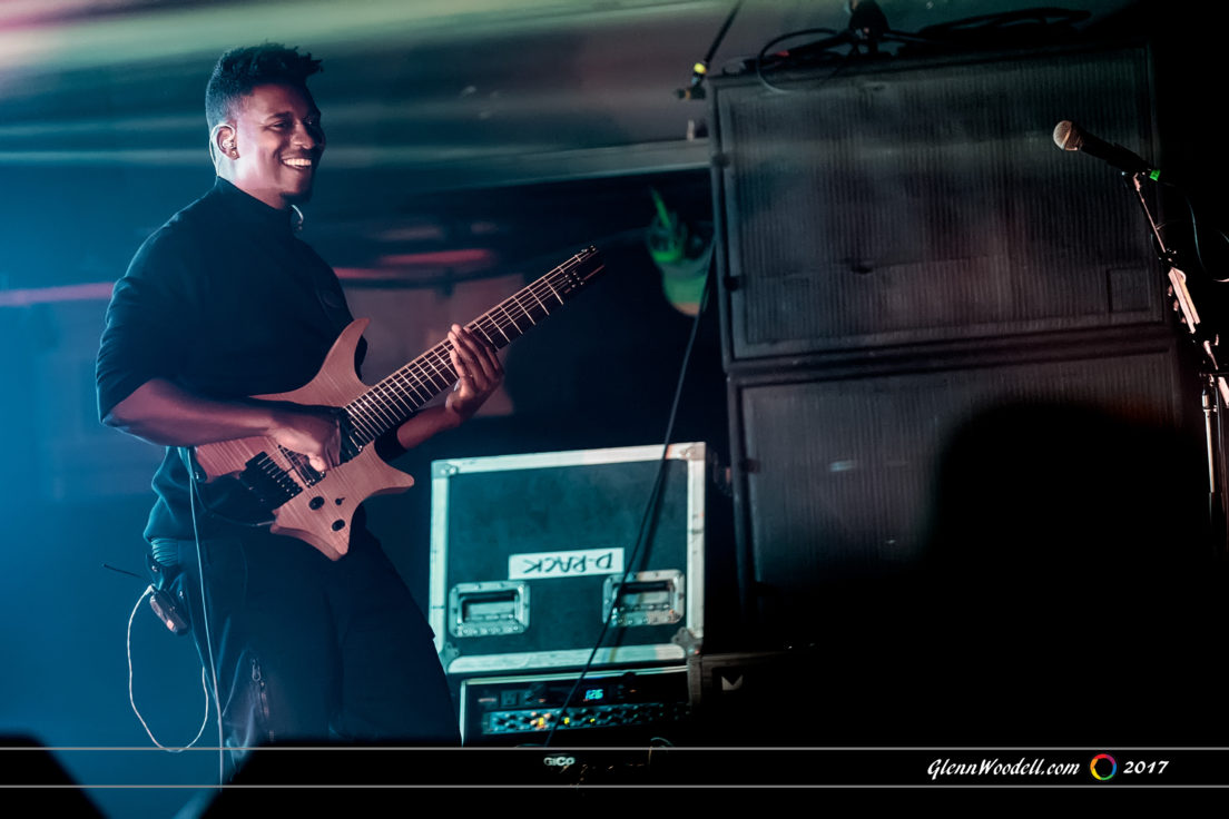 animals as leaders_4665