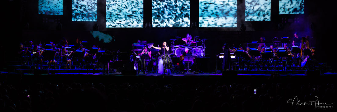 Evanescence-8