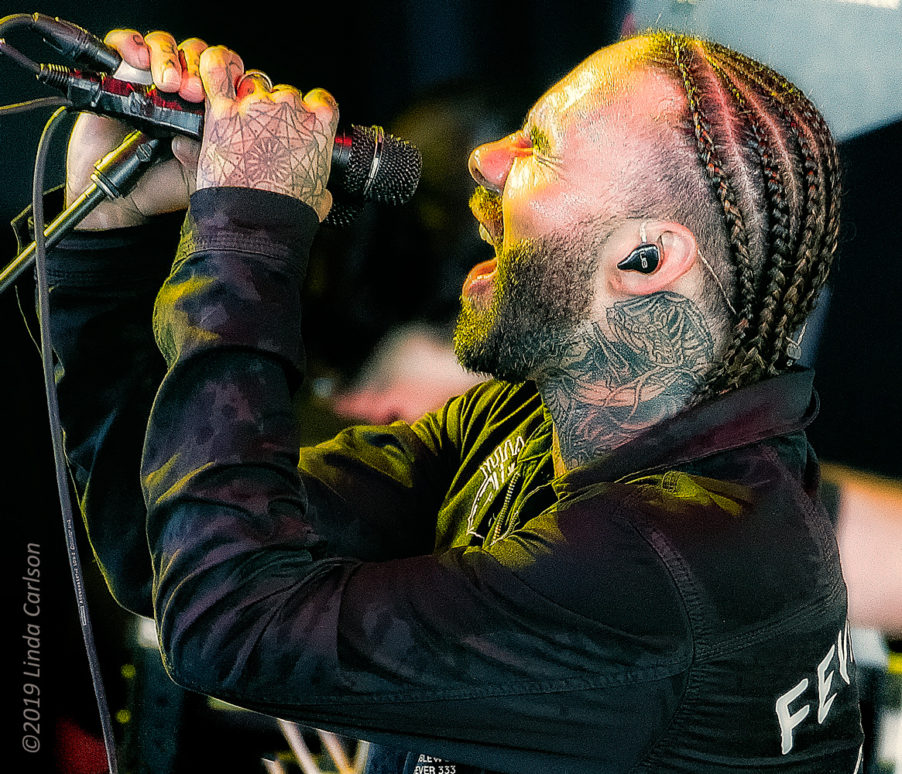 7024_Fever333_18Aug2019_LindaCarlson_web