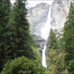 미국 서부지역 자연 100배 즐기기 (25) Sequoia-Kings Canyon-Yosemite National Park