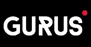 Gurus Solutions- Oracle NetSuite Consultants