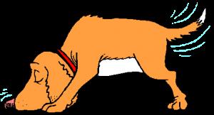 trckdog