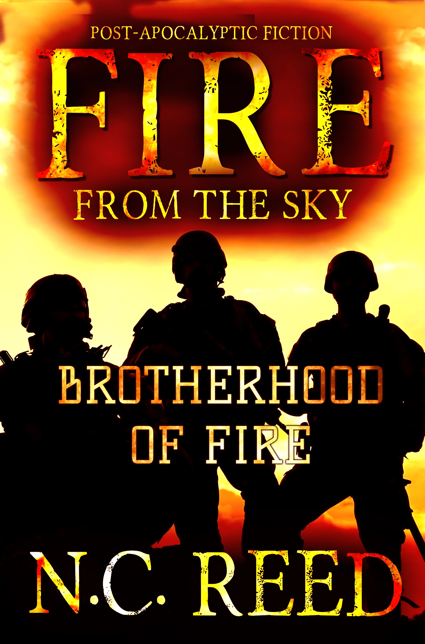 """""""Fire From the Sky: Book 2: Brotherhood of Fire"""""""
