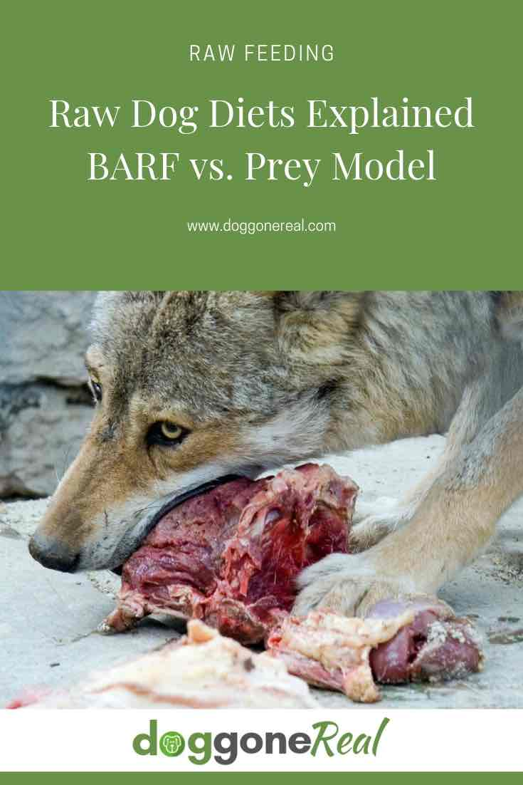 Raw Dog Diets Explained - BARF vs Prey Raw Diet