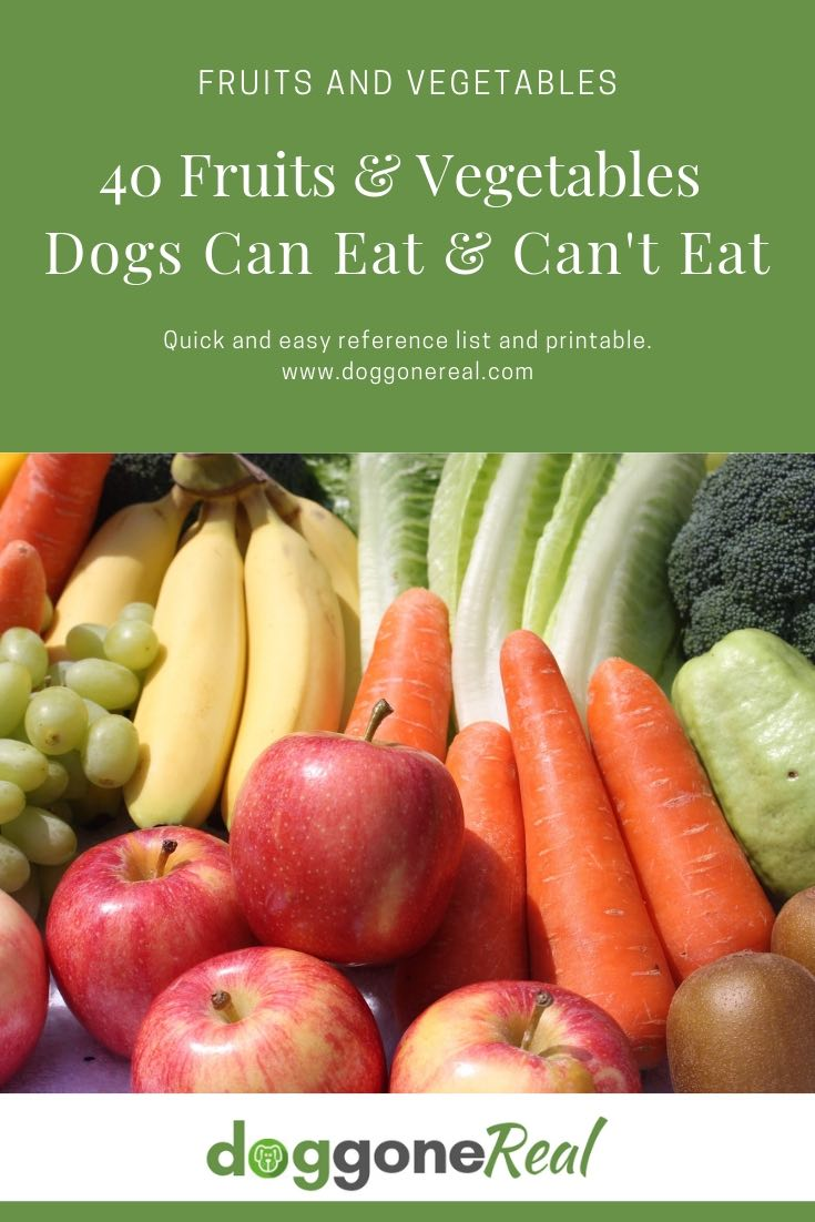 Fruits and vegetables dogs can eat
