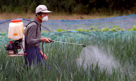 Your Brain, Pesticides and Cancer
