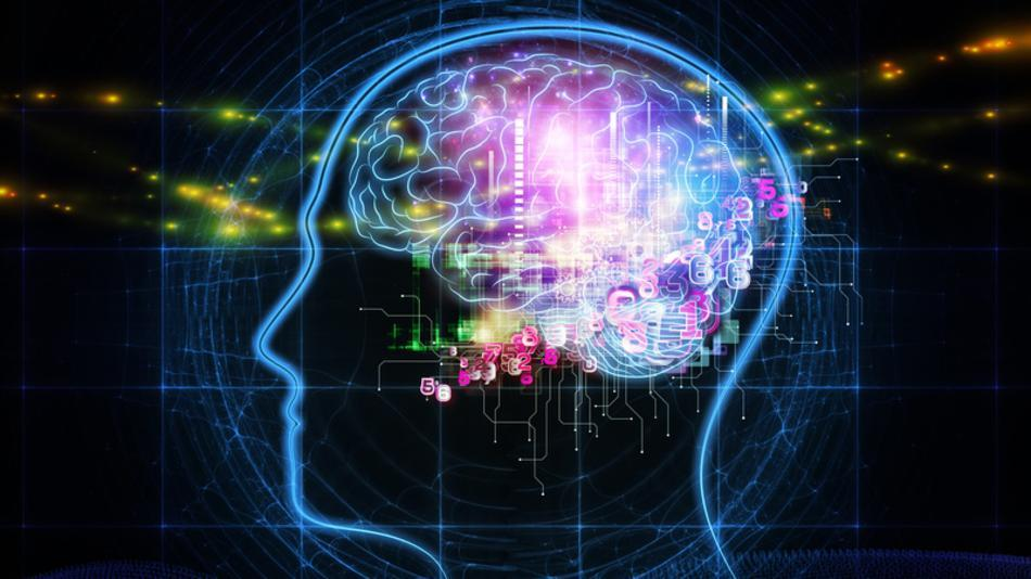 Love Vibration - Beautiful Balanced Brain