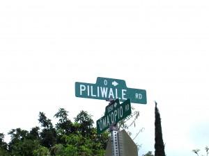 Piliwale Road Maui