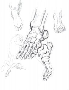 foot horse middle finger