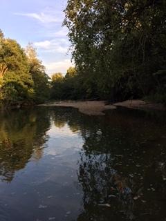 Image of Creek and Sand Bar