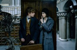 Fantastic Beasts and Where to Find Them 2016 Eddie Redmayne