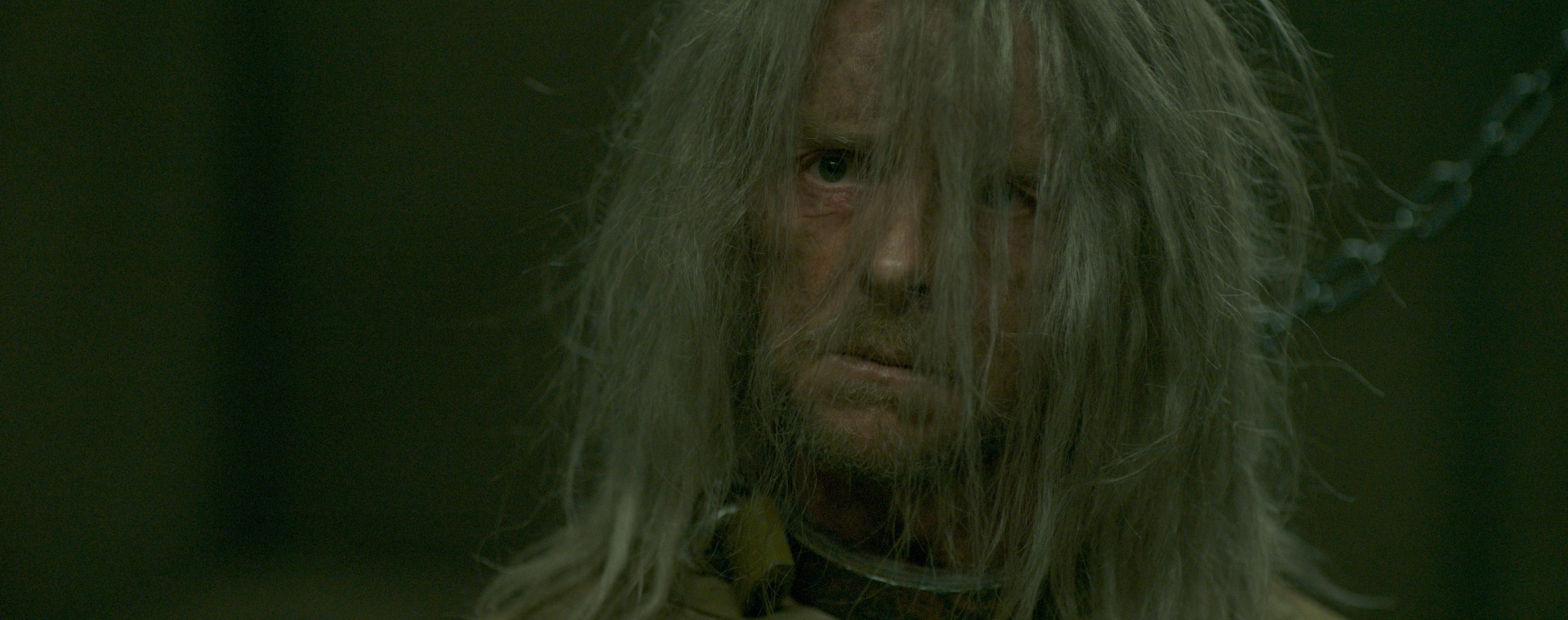 Image of Simon Pegg in Inheritance