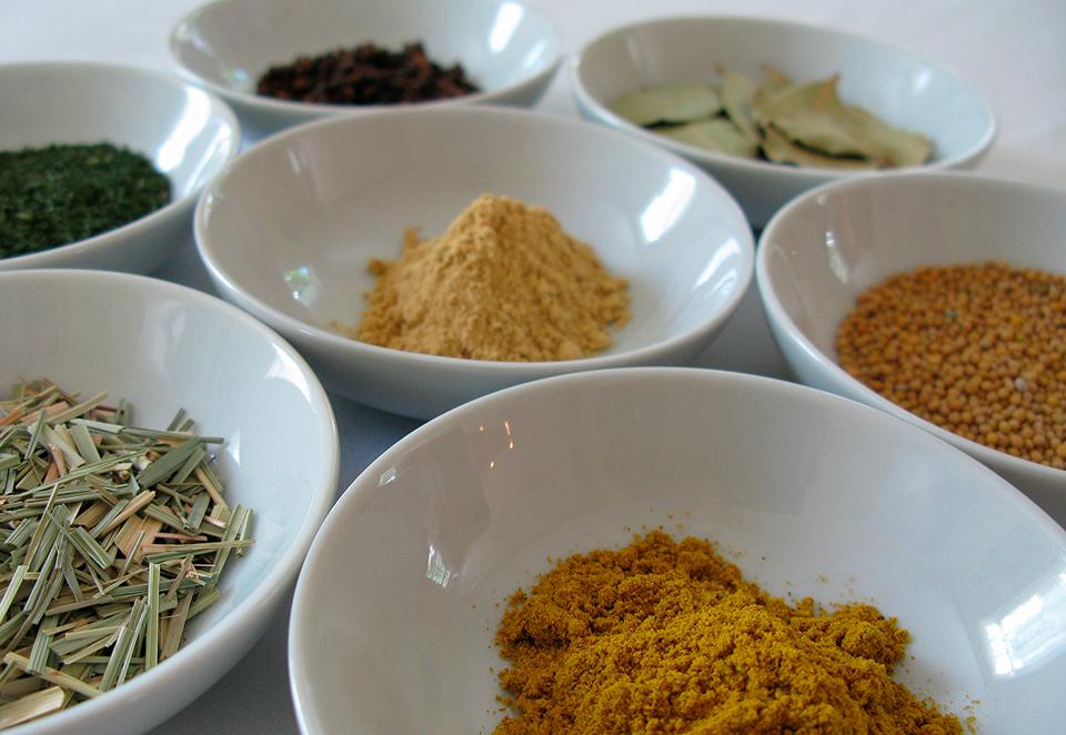 Ayurvedic holistic medicine treatments