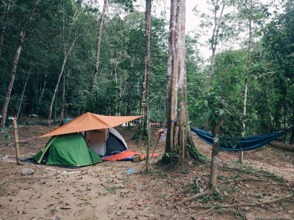 Large campsite with hammock and tents