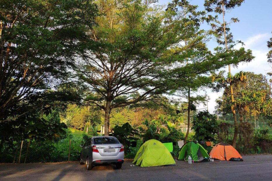 3 tents set up beside the car under the trees