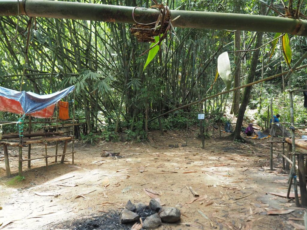 Campsite with bamboo trees around