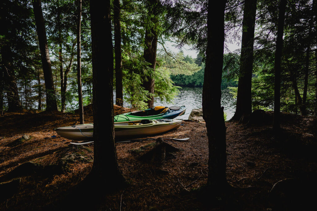 2 kayaks in the forest