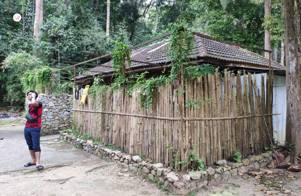 Toilet with bamboo wall surrounding