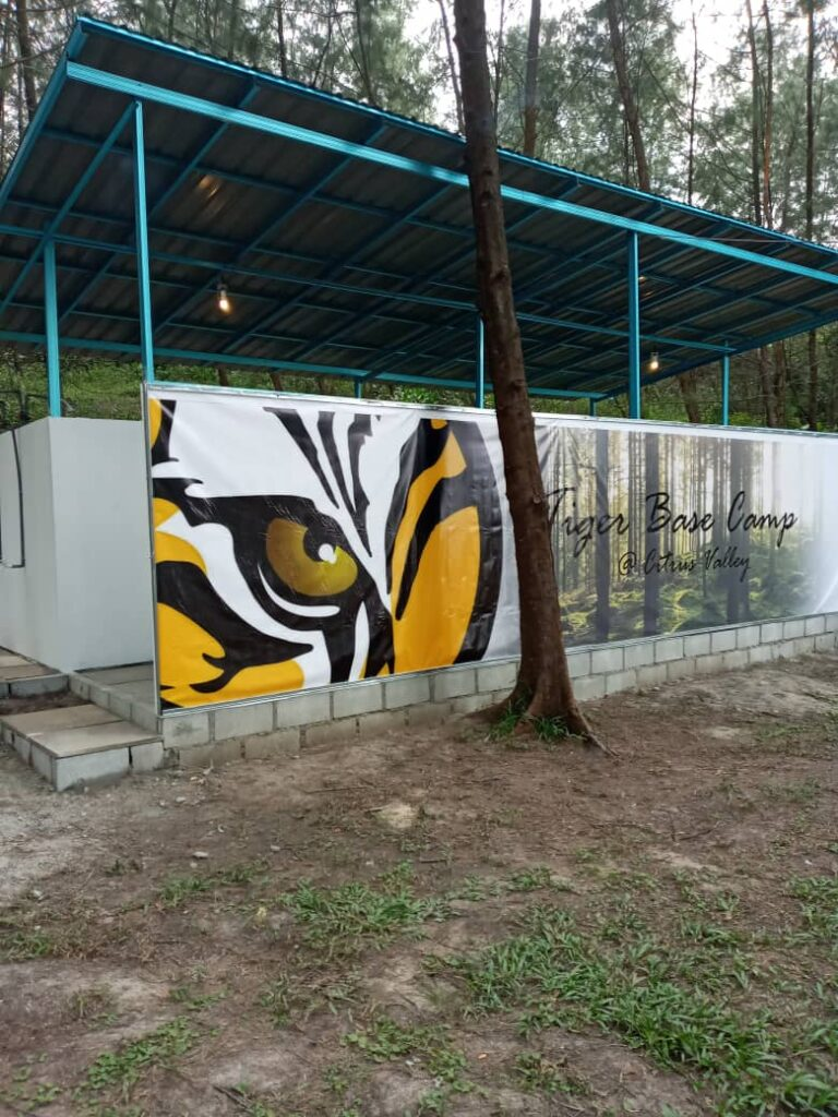 mural art of a tiger