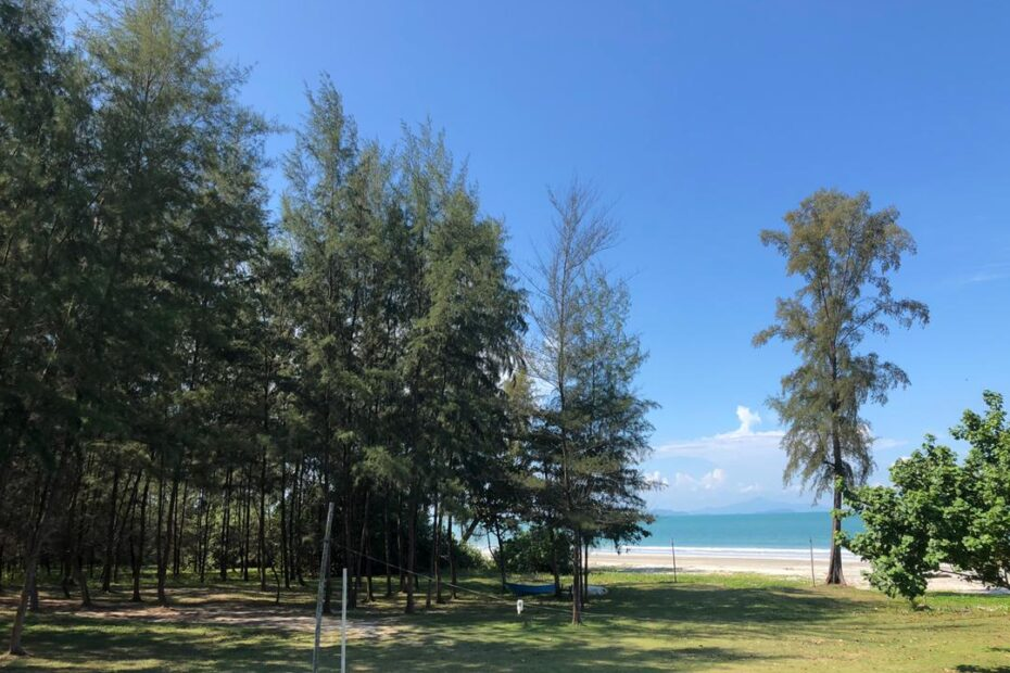 campsite view of the beach