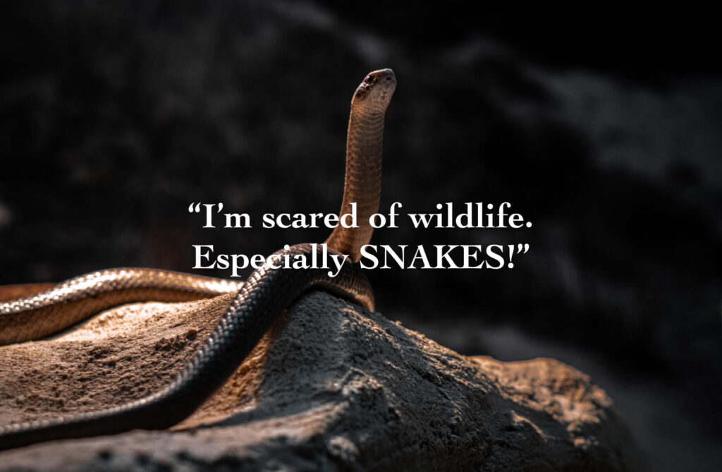 i'm scared of wildlife. Especially snakes!