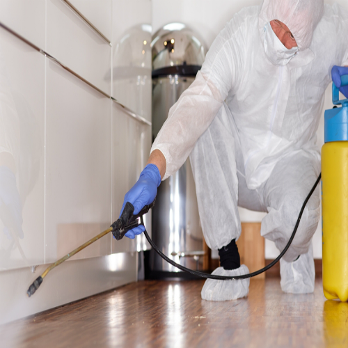 Interior Exterior Sanitization Services