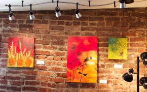 Art exhibit at Bloomsbury Coffee House in Ashland, Oregon for Artist Cammy Davis