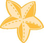 little-starfish
