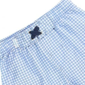 boys-blue-gingham-swim-trunks