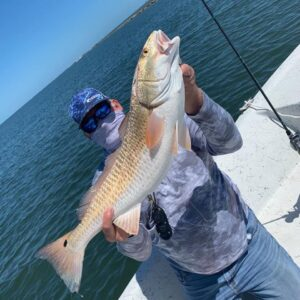 A nice Redfish caught near Texas City. Book this trip here.