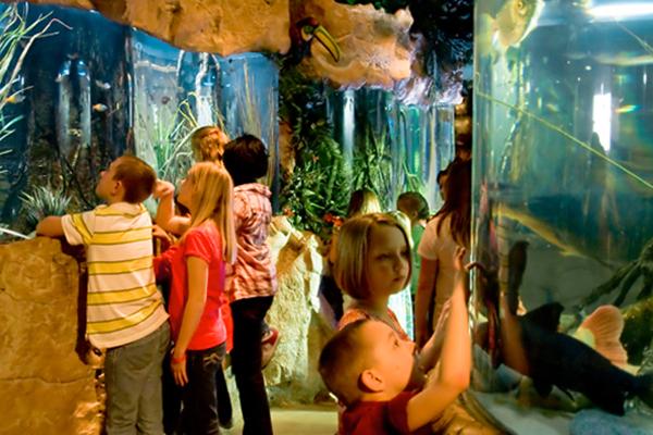 Nature in Kemah   Image by: aquariumrestaurants.com