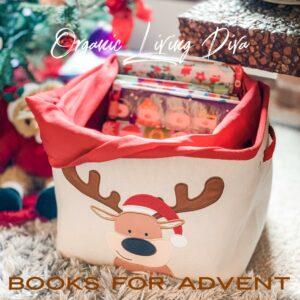 Advent-Book-Box