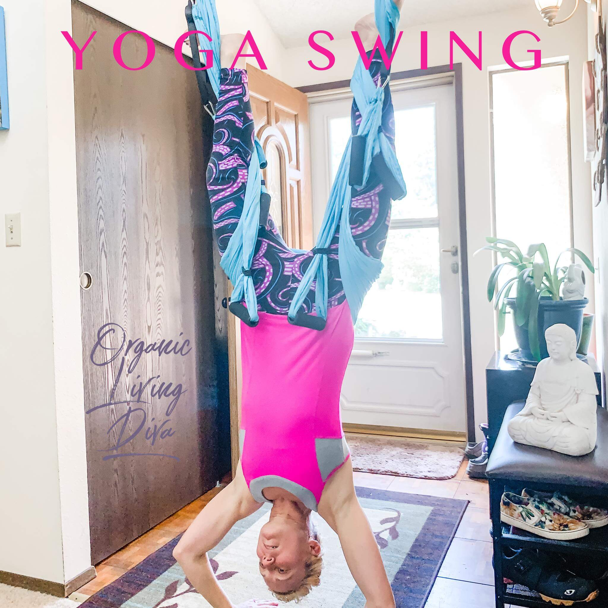 Yoga Swing Inversion