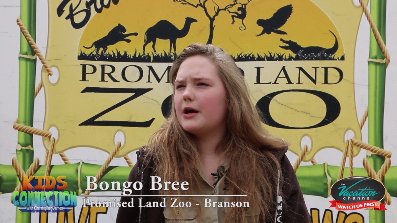 Bongo Bree From The Promised Land Zoo in Branson Missouri